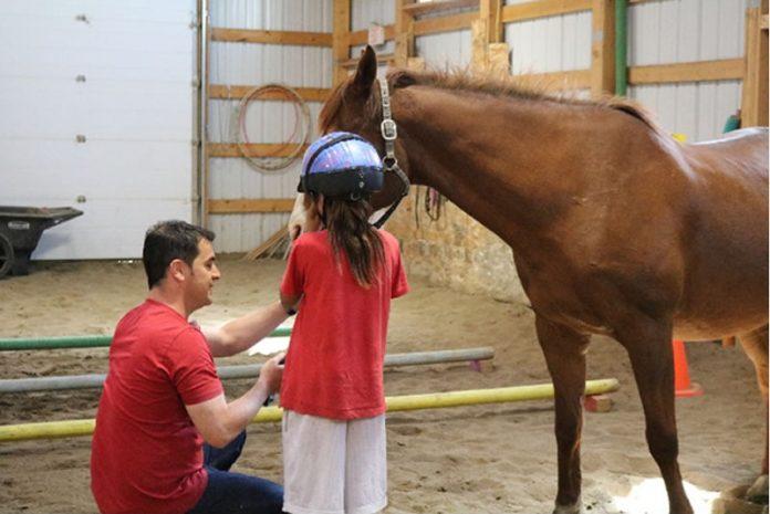 Integrativno učenje sa konjima