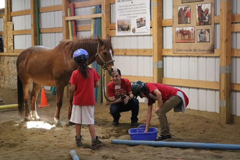 Integrativno ucenje sa konjima 2