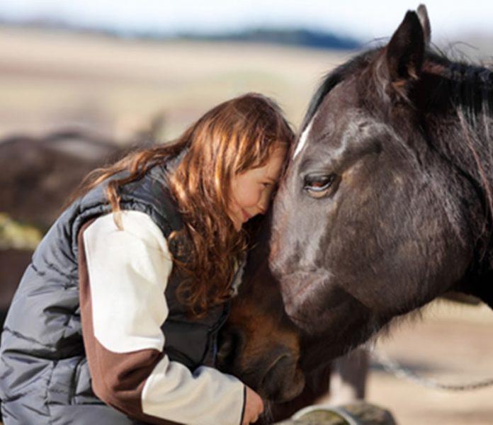 Konji su najbolji prirodni terapeuti