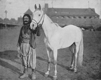 Sirijac sa Arapskim konjem-1893.god.jpg