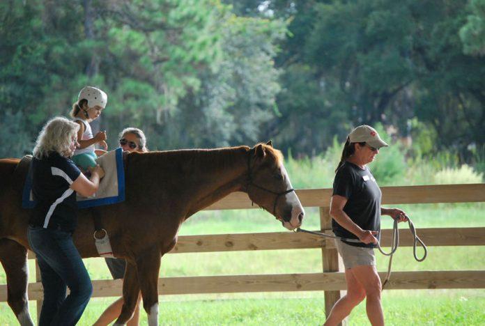 Terapija i aktivnosti sa konjima