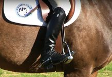 Pravilna pozicija jahaca-upotreba nogu